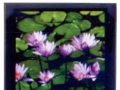 Display OLED gráfico de bajo consumo